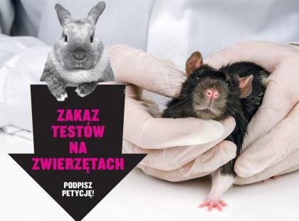 Czy wiesz, że nadal ponad 500 000 zwierząt jest wykorzystywanych do kosmetycznych testów. Możesz się temu sprzeciwić