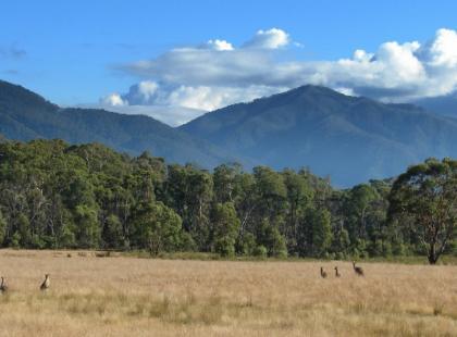 Czy wiesz, że najwyższym szczytem Australii jest Góra Kościuszki?