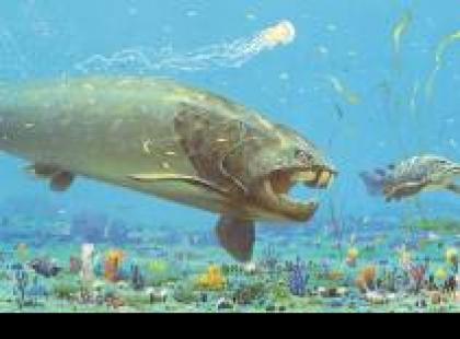 Czy wiesz, że pancerny Dunkleosteus był najsilniejszym morskim drapieżnikiem w historii?