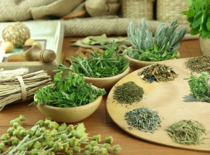 zioła, zioło, ziołolecznictwo, medycyna alternatywna/fot. Fotolia