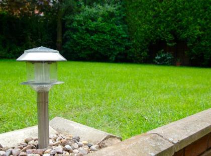 Czym oświetlić ogród?