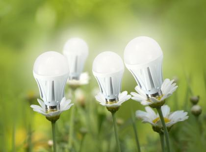 Czym się kierować przy zakupie żarówki LED? 5 praktycznych rad!