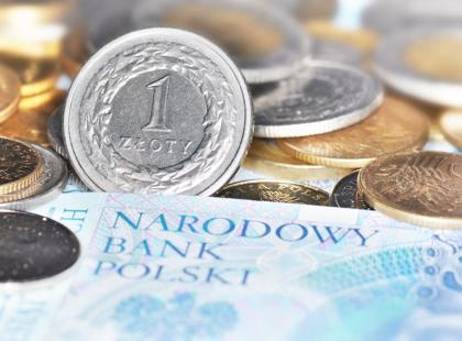 Czym zajmuje się nasz bank centralny?