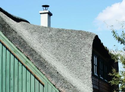 Dach naturalnie trwały