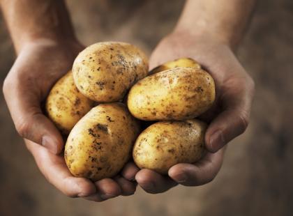 Dania z pieczonymi ziemniakami - przepisy