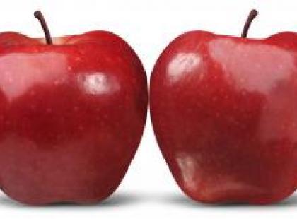 Dieta dla osób z BMI powyżej 30