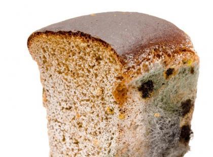 Dlaczego chleb się psuje?