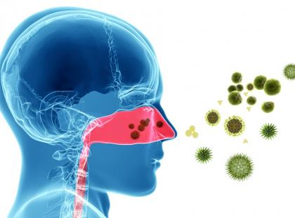 Dlaczego nos w czasie choroby się zatyka?