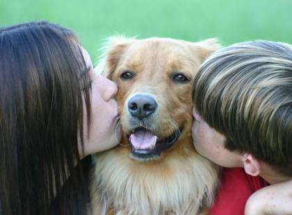 Dogoterapia – jak pies pomaga człowiekowi?