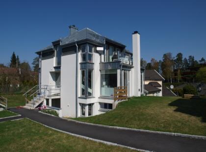 Dom szkieletowy