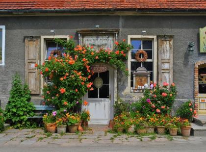 Donice ogrodowe  -  5 pomysłów w czym posadzić rośliny
