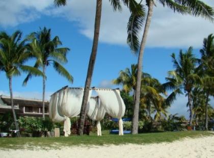 Drapieżna fala na Mauritius