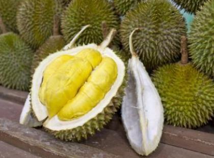 Durian – król owoców