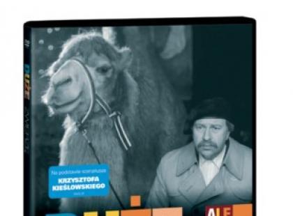 """""""Duże zwierzę"""" na DVD - ROZWIĄZANIE KONKURSU!!!"""
