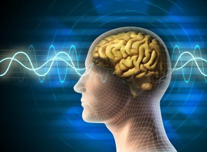 Fale mózgowe na podglądzie – badanie EEG