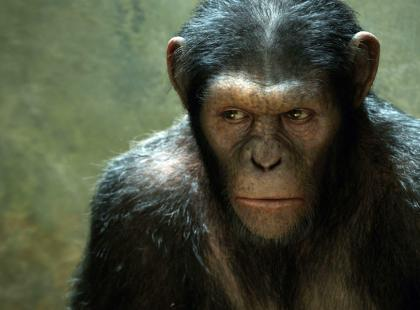 """""""Geneza planety małp"""" - We-Dwoje.pl recenzuje"""