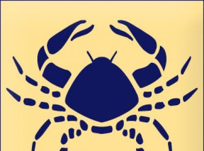 Horoskop 2008 - Rak