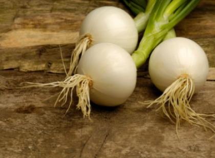 Idealne remedium na przeziębienie - sprawdź przepisy na syrop z cebuli