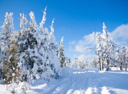 Idzie zima, będzie ślisko, czyli co warto wiedzieć na wszelki wypadek
