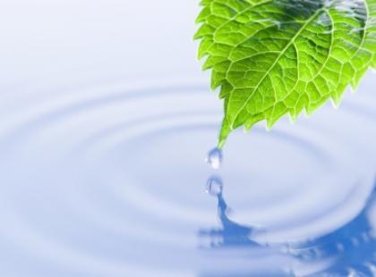 Ile wody potrzebuje człowiek?