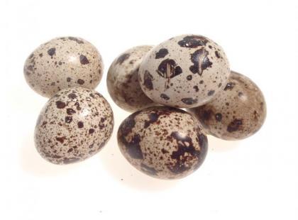 Jajka gęsie, przepirórcze i strusie
