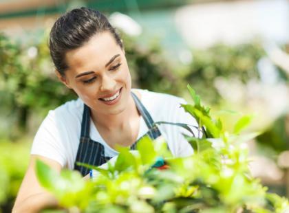 Jak dbać o drzewka i krzewy owocowe?
