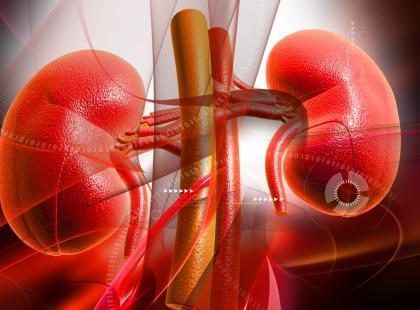 Jak dbać o nerki w cukrzycy?