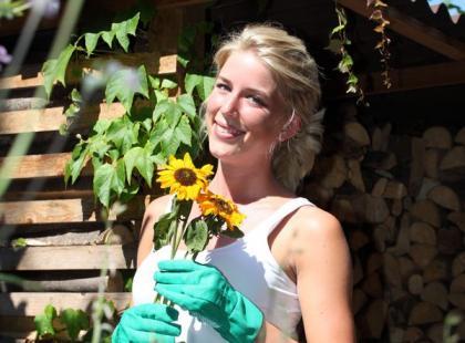 Jak dbać o słoneczniki w ogródku?