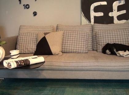 Jak dobrać kanapę do salonu?