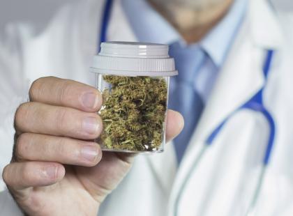 Jak działa marihuana lecznicza?