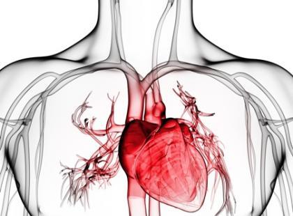 Jak działa stymulator serca?