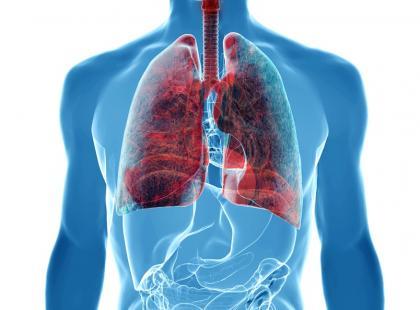 Jak oczyścić układ oddechowy z zalegających w nim pyłów?