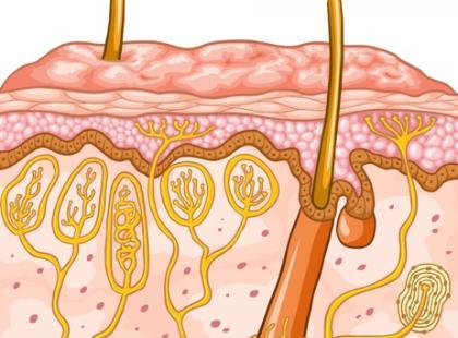 Jak preparaty trychologiczne wpływają na włosy?