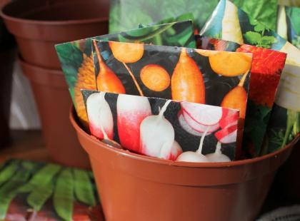 Jak przechowywać nasiona?