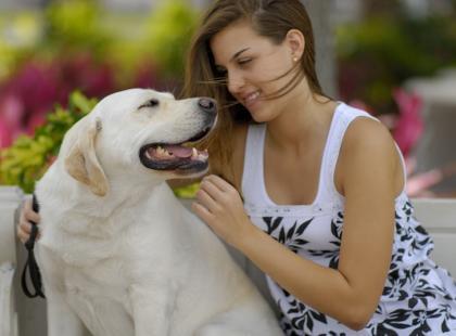 Jak przyzwyczaić psa do nowego partnera?