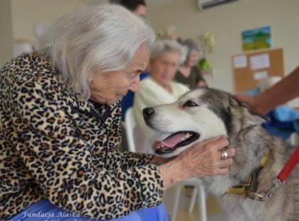 Jak psy pomagają chorym na Alzheimera?
