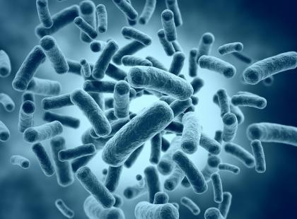 Jak rozpoznać objawy zakażenia Helicobacter pylori?