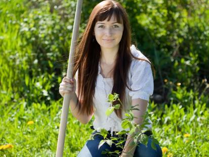 Jak sadzić krzewy?