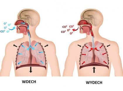 Jak sprawdzić drożność nosa?