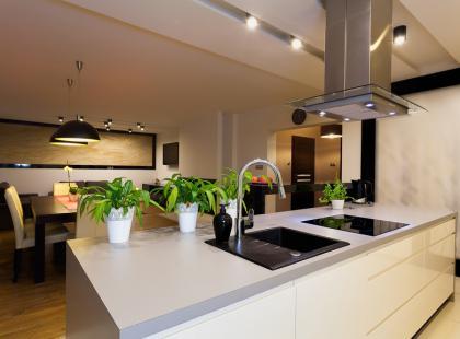 Jak ustawiać rośliny w mieszkaniu?