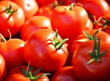 Jak ususzyć pomidory?