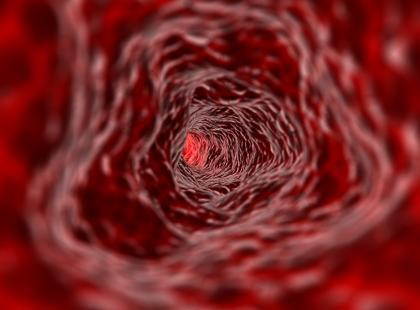 Jak w naszym ciele krąży limfa?