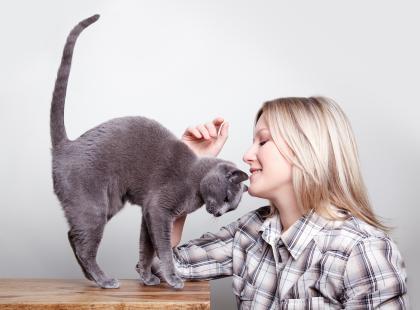 Jak wpłynąć na kota z charakterkiem?