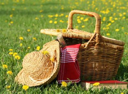Jak wybrać kosz piknikowy?