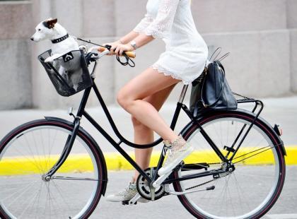 Jak wybrać najlepszy model roweru?
