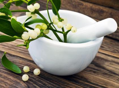 Jak wykorzystać jemiołę dla zdrowia?