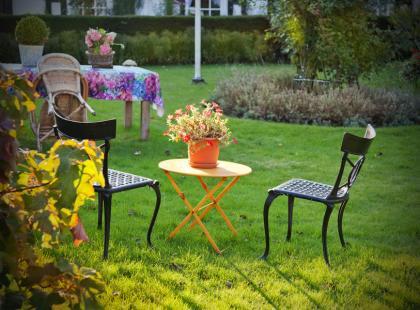 Jak zadbać o ogród przed zimą