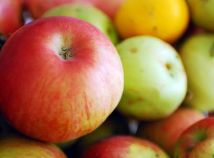 Ebbelwoi produkuje się z kwaśnych jabłek, stąd jego kwaskowy posmak.