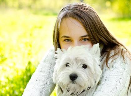 Jaka rasa psa najlepiej do ciebie pasuje? [psychotest]