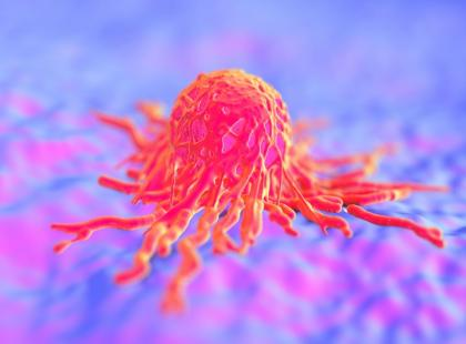 Jakie cechy mają komórki nowotworowe?